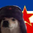 comradedoggo